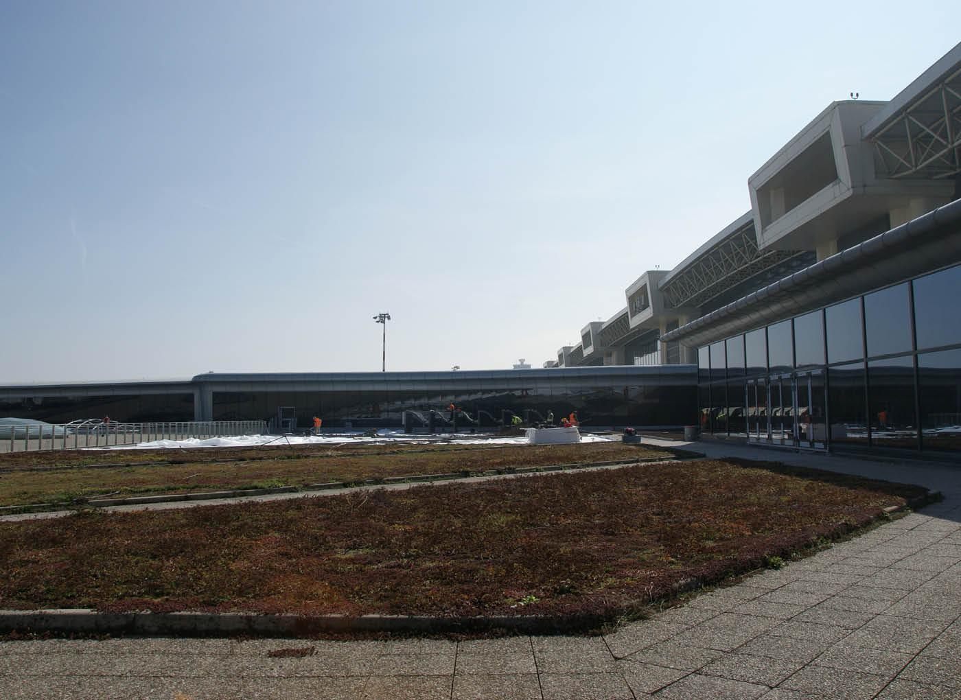 aeroporto-malpensa-giardino-pensile-agrileca-lecagreen-11