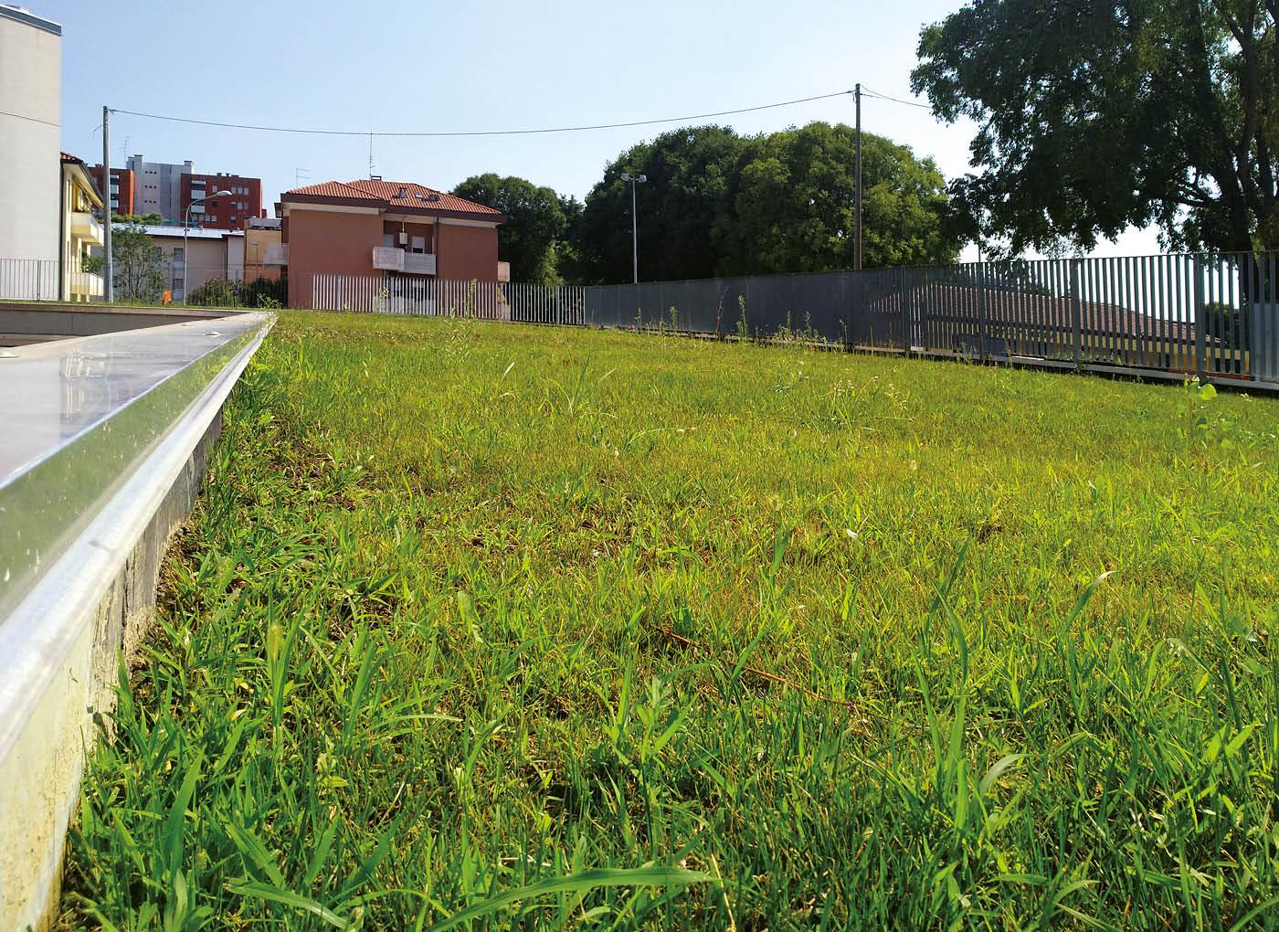 ospedale-pordenone-tetto-verde-lecagreen-1