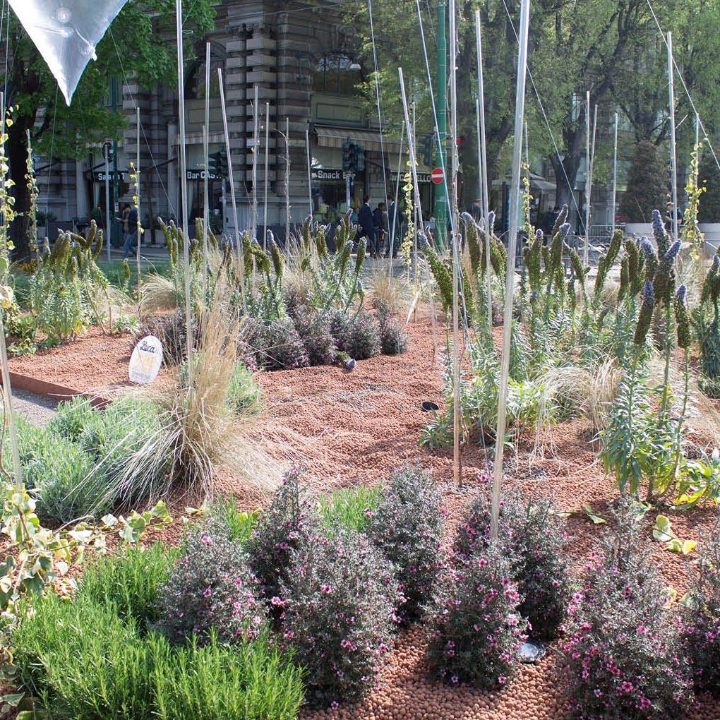 Paillage minéral, paillis pour jardins, sols, pots