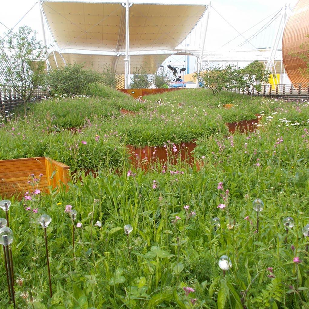 Végétalisation urbaine, paysagisme urbain, jardins